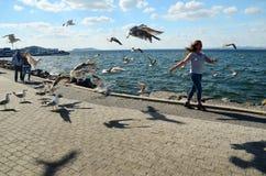 Buyukada Island, Istanbul, Turkey -MAY 10, 2018: Girl in the coast with many seagulls around. royalty free stock photo