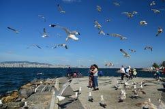 Buyukada Island, Istanbul, Turkey -MAY 10, 2018: People in the coast with many seagulls around. Making photo with thems.Many seagulls in the sky Buyukada is stock image