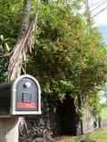 Buzón con la raya roja y flores rojas en la parte posterior Fotos de archivo libres de regalías