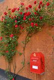 Buzón de correos con las flores rojas Imágenes de archivo libres de regalías