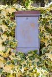Buzón gris del metal rodeado con las hojas del verde y del amarillo Decoración al aire libre Fotos de archivo