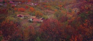 从buzau山的Oversharpened五颜六色的秋季视图 免版税库存照片