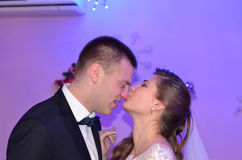 Buziak na nosie Zdjęcie Royalty Free
