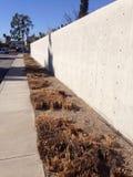 Buzz Cut. Talk Grass cut short along wall Royalty Free Stock Photography