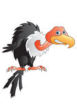 Buzzard Cartoon Royalty Free Stock Photography