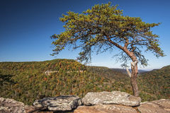 Buzzards Roost Over Look At Fall Creek Falls State Park. In Tennessee Royalty Free Stock Image