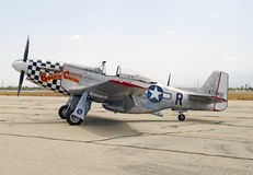 Buzzin' Cuzzin' P-51 Mustang Fighter Aircraft Royalty Free Stock Images