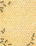 Buzzz - geïllustreerdee honingraat met bijen Royalty-vrije Stock Afbeelding