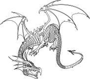 Bw дракона Стоковое Изображение