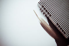 Bw background with feather and notebook Royalty Free Stock Image