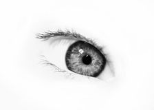 BW beautiful eye Royalty Free Stock Photos