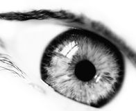 BW emotional eye. Beautiful woman eye Stock Photos