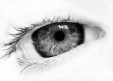 BW eye. Photo of a woman eye Royalty Free Stock Images