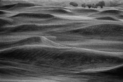 BW-golfcursus Royalty-vrije Stock Foto's
