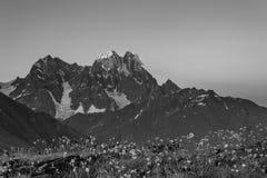 BW-Landschaft mit Berg Ushba Stockbilder