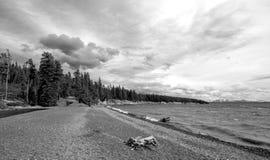 BW - Le bois de flottage sur le banc de sable étroit a appelé Hard Road de suivre au lac Yellowstone en parc national de Yellowst images stock