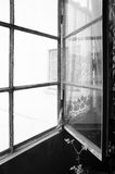 BW metal abandoned window with flower. Black and white photo of sn old abandoned house metal and glass open window with a little pink flower next to it Royalty Free Stock Photography