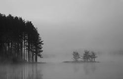 Bw misty lake Royalty Free Stock Photos