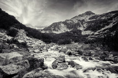 BW nature. Black and white landscape with cold high mountain River in Pirin mountain Stock Photo