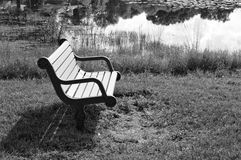 BW park bench by a lake. Black and white of a park bench near the edge of a lake with tall weeds and water reflections Stock Photography