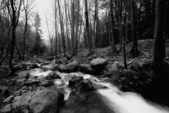 Bw river Royalty Free Stock Photos