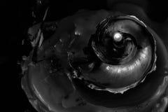 BW Seashell Стоковые Фотографии RF