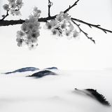 BW style Cherry blossoms Stock Images