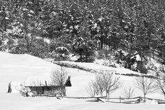 Bw winter landscape Royalty Free Stock Photo