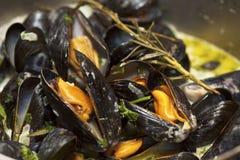 być masłowaty zakończenie gotującym mussels sause gotować Obraz Stock