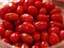 być obramowane zdjęcie pomidory pionowe Obrazy Stock