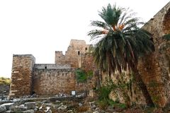 Byblos Crusader Castle Stock Photos