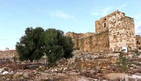 Byblos-Kreuzfahrer-Festung Lizenzfreie Stockfotografie