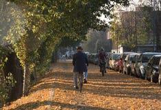 Bycicle 2 в дороге листьев зашкурит банки Стоковое Изображение RF
