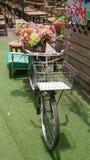 Bycicle Immagine Stock Libera da Diritti