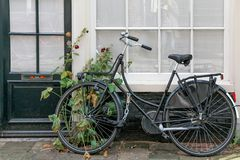Bycicle and flowers on housefront. Bycicle and flowers in front of window Stock Photography