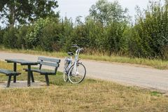 A bycicle parked near a bench and between bushes in park.  stock photo