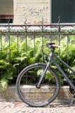 Bycicle przed metalu ogrodzeniem Obraz Stock