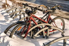 Bycicle in snow. Bycicle  left in the snow on a cold winter day Royalty Free Stock Photos