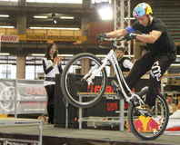 Bycicle stunt. A bycicle show with two important Royalty Free Stock Photo