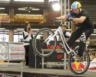 bycicle wyczyn kaskaderski Zdjęcie Royalty Free