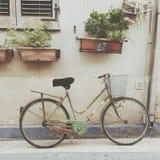 Bycicle y planta de las flores en el camino Imagenes de archivo