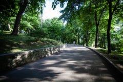 Bycicling en el parque Fotografía de archivo