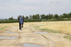 Byciclist On The Field Path Royalty Free Stock Photography