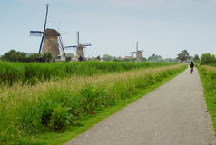 Byciclist and windmills Stock Photography