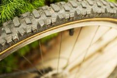 Bycycle Gummireifen Stockfoto