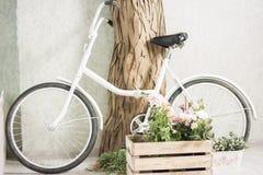 Bycycle réutilisé avec des paniers des fleurs Photographie stock libre de droits