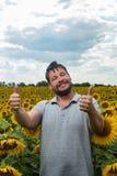 Byczy rolnik na polu z Obrazy Stock