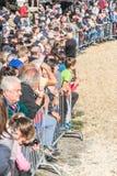 Bydło konkurs przy Brembana doliną i wystawa, Serina, Bergamo, Lombardia Włochy Krowa rewolucjonistka dostrzegający konkurs Obrazy Royalty Free