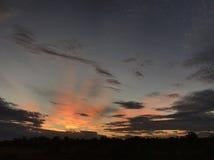 Bydło Stacjonuje, Północno Zachodni Queensland Obrazy Royalty Free