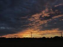 Bydło Stacjonuje, Północno Zachodni Queensland Zdjęcia Royalty Free